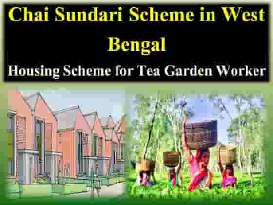 Chaa Sundari Housing Scheme